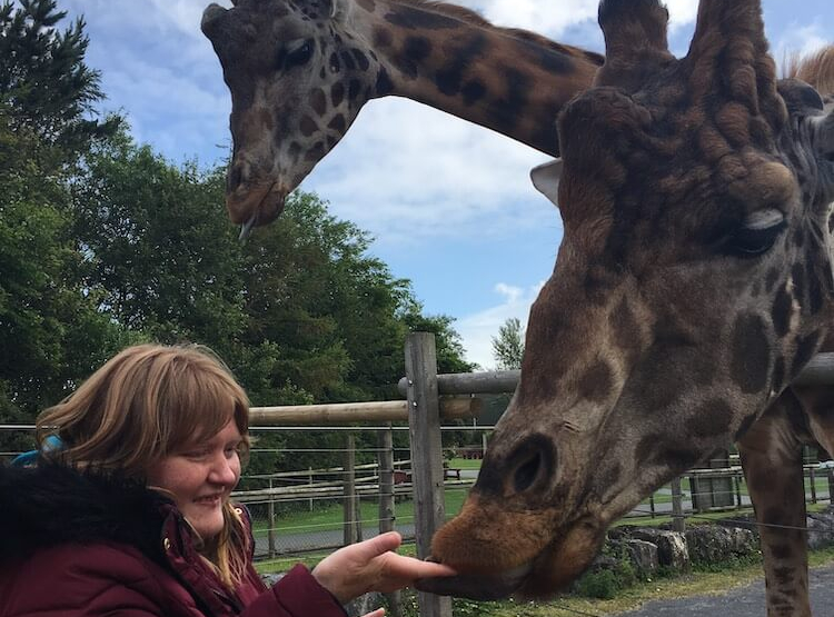 Jenny Griffiths feeds giraffe